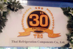 30 years celebration in 2017